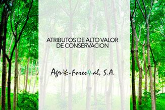Forestry Documents | Agroforestal S.A.
